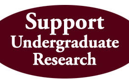 Give-to-Undergraduate-Research